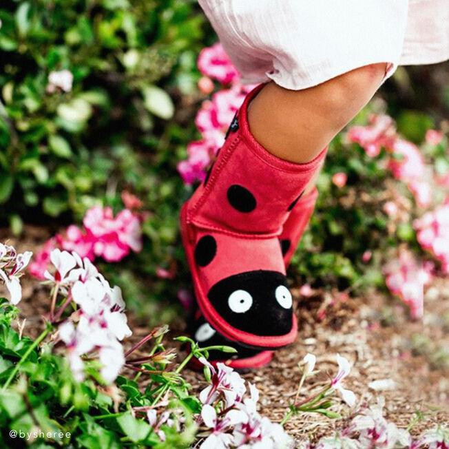 Ladybird, Czerwony, hi-res