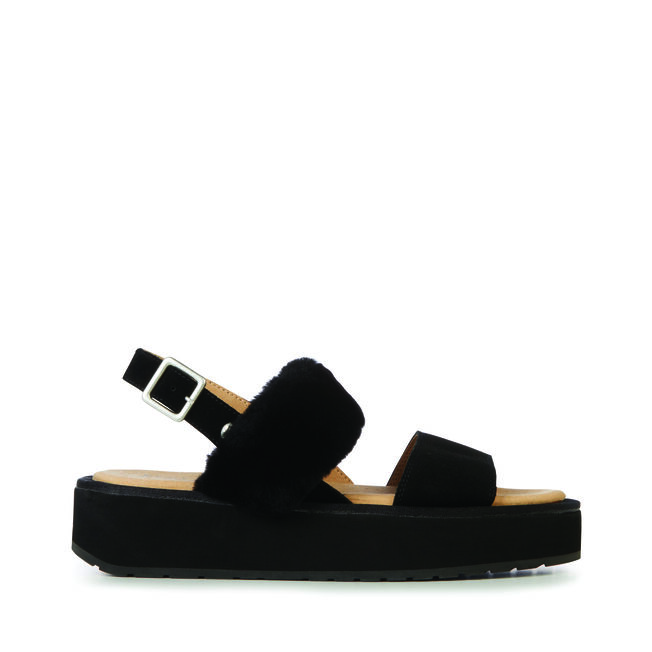 Durack Stinger, BLACK, hi-res
